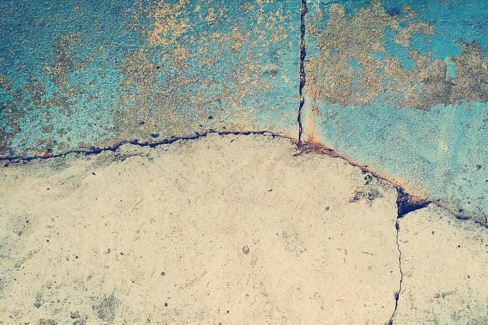 razvlažilci zraka in zidna plesen